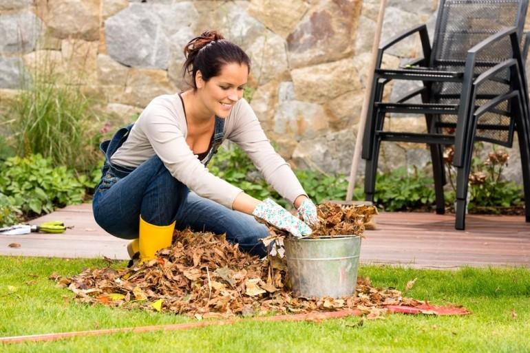 Почистване дворове